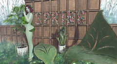 welcome back spring, been waiting patiently for you (elliedonut Resident) Tags: wasabi pills trap tabou dust bunny trompe loeil lisp cc secondlife sl spring