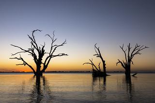 Lake Bonney - Australia