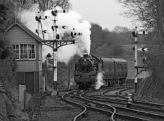 80072 BR Standard Class 4 tank (Roger Wasley) Tags: 80072 britishrailways standard class4 tank bewdley svr steam train railways severnvalleyrailway locomotive worcestershire heritage mono blackandwhite monochrome