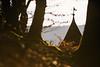 Schwäbische Alb_2016-8390.jpg (Peter Kächele) Tags: michelskappel d750 landscape landschaft biosphärengebiet badurach schwäbischealb 2016 nikon michelskäppelle albtrauf