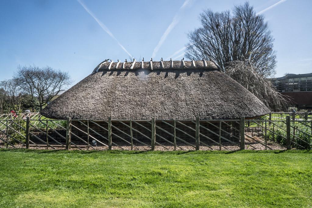 VISIT TO THE NATIONAL BOTANICAL GARDENS [GLASNEVIN DUBLIN]-138529