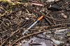The grittier side of urbex (d0mokun) Tags: derby england unitedkingdom gb friar gate station goods warehouse urbex abandoned decay urban railway drugs vice needles gritty seedy