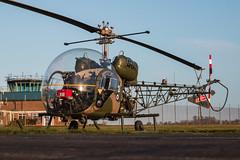 EGVP - Westland Sioux AH1 - XT131 (lynothehammer1978) Tags: egvp aacmiddlewallop armyhistoricaircraftflight westlandsiouxah1 xt131 themuseumofarmyflying