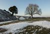 Old Sarum Snow (Crisp-13) Tags: snow old sarum salisbury wiltshire tree