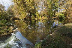 Reflections of the Charente in autumn-3 (jonathan charles photo) Tags: charente river france autumn trees reflection landscape art photo jonathan charles water park wood tree sky grass forest