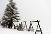 DSC04033-1-3 (Tihomir Iliev) Tags: winter snow cradle blackandwhite