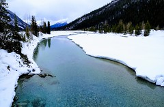 Spring Time  Canadian Rockies (Mr. Happy Face - Peace :)) Tags: cans2s scenery landscape rockies snow sky clouds hiking field beautiful bristishcolumbia river yoho canadaparks trees forest mountains flickrfriday art2018