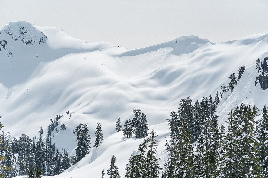 The World's Best Photos of mountain and northwest