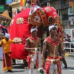 Kandy Day Perahera (1X7A4743b) thumbnail