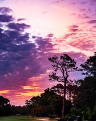Sunrise 4-21-2018 (MHBenton) Tags: georgia landscape mhbenton stsimonsisland retreat plantation golf course