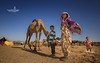 camel fair, rajasthan (Albert Photo) Tags: camelfair india cart carriage rajasthan asia sky animal giraffe landscape people culture children kid boy girl