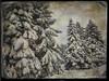 DE LA NEIGE,TOUJOURS DE LA NEIGE (pierre.arnoldi) Tags: montsainthilaire québec canada pierrearnoldi photographequébécois phototexturée phototéléphone photoderue photooriginale photocouleur iphone6s hiver neige photoàlancienne