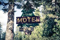Yosemite.Road.2600p.346 (l.dardennes) Tags: yosemite yosemitenationalpark california usa canoneos7dmarkii sigma1750mmf28 fishcamp étatsunis us