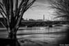 Le pont des Arts (karmajigme) Tags: bridge pont river fleuve seine paris eiffeltower bw toureiffel travel monochrome trees water blackandwhite noiretblanc nikon