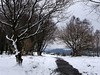 20180318-144215 (aderixon) Tags: naturelandscapehill natureplanttree natureweathersnow transportpath pontypridd midglamorgan walesuk nature snow weather
