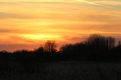 Sunset Mere (Blackpool Nature) Tags: scenes