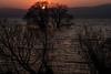 琵琶湖・湖北38・Lake Biwa (anglo10) Tags: 長浜市 滋賀県 japan lake 琵琶湖 夕景 sunset 湖