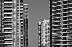 Dans les airs (rknecht) Tags: canon650d canon50mm18 buildings noiretblanc blackandwhite sky windows urban city ville israel telaviv batyam avion plane streetphoto photoderue