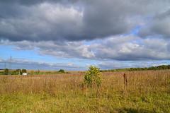 Fading field I (МирославСтаменов) Tags: russia moscowregion pushchino slope fading field cloudscape autumn scope
