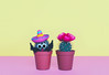 Small cactus in a flowerpot on a trendy background. (niekrasova) Tags: art background beautiful hat botanical botany bright cacti cactus color colorful creative desert design fashion fashioncactus flower fun gallery green grow idea magazine mexico minimal minimalism mood nature neon pastel pink plant pot prickly spike spines stillife style stylish succulent summer surrealism thorn flowerpot trend unusual sombrero vanilla vivid yellow