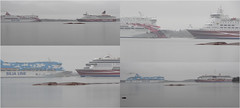 Ferries on a gray day (evisdotter) Tags: ferriesonagrayday balticprincess amorella galaxy grace collage spring fog mariehamn