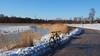 2018 Bike 180: Day 56, March 16 (olmofin) Tags: 2018bike180 finland bicycle polkupyörä pikkuhuopalahti ice sea bay snow gravel path pyörätie