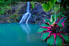 Caribbean style (Plamen Troshev) Tags: caribbean style pool waterfall flowers grass green leafs red reflection river mountain jungle beauty swimming rest new adventure holiday explore