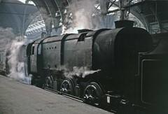 HCRS 33006 at Paddington (TrainsandTravel) Tags: england angleterre standardgauge voienormale normalspur steamtrains trainsavapeur dampfzüge thehomecountiesrailwaysociety paddington london q1 060 33006
