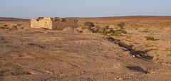 Fassuah Hajj Fort (Kachangas) Tags: lawrenceofarabia jordan desert arabrevolt wwi ww1 trenches railway rail arab arabia war militaryhistory history hejaz train maan ottoman turkey british insurgency explosion bombing
