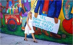 Iel Pueblo Unido Jamás Será Vencido! (Steve Lundqvist) Tags: york usa states united america manhattan stati uniti travel trip viaggio urban city urbanscape ny nyc downtown building view point big apple murales painting graffiti fujifilm x100s little italy edificio brooklyn wall mural colors williamsburg art red blue muro