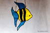 glass fish (aika217) Tags: canon eos 77d tamron sp 90mm f28 di vc usd macro11 f017 glass fish