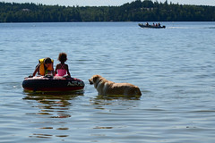 Kids and Dog in the Water (Vegan Butterfly) Tags: outside outdoor summer beach lake animal dog kids children people fun play playing tube water boat