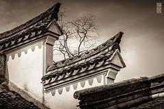 Toits (TchinChine !) Tags: chine lijiakengningbosimingshan pays zhejiang æμæ±