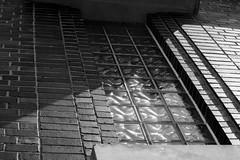 IMG_5819 (Wespennest) Tags: urbex urbanexploration modernruins army armyintelligence vinthill vinthillfarmsstation coldwar surveillance decay virginia faquier nsa nationalsecurityadministration sigint signalsintelligence armysecurityagency electronicwarfare espionage vhfs defense war