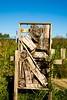 _DSC0874 (durr-architect) Tags: art almere h2o stok untitled agricola heritage marker timeline ven sculpture steel