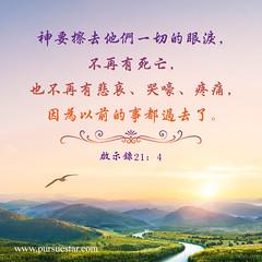 圣经金句:神要擦去他们一切的眼泪,不再有死亡,也不再有悲哀、哭嚎、疼痛,因为以前的事都过去了。(启示录21:4) (追逐晨星) Tags: 金句 金句卡片