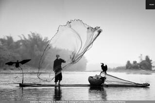 Chinese Traditional Fisherman Li River, China