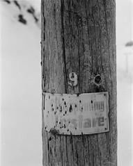 Stille livsfare (Marius Krane) Tags: vaterfjorden ilfotecddx hp5plus 4x5 theitaliancamera ilford storformat analog lyktestolpe