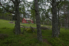 The red cabin (Anders_3) Tags: flørli lysefjorden rogaland norge norway hiking cabin woods mountains nikon green turistforeningen flørli4444 forsand worldslongestwoodenstairway 7s53077 fjornorway ilovenorway fottur fjelltur flørlitrappene