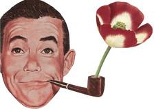Poppy Pipe (dadadreams (Michelle Lanter)) Tags: poppypipe opium smoking pipesmoker floralart poppyflower