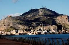 Un mare....di gru (dona(bluesea)) Tags: monte pellegrino palermo sicilia sicily