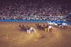 87.365.2018 Chuck Wagon Racing - Houston Livestock and Rodeo 2018 (Kris McNeil) Tags: houstonlivestockshowandrodeo houston rodeo chuck wagon racing hold tight horse