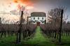 Farmhouse (_salanka_) Tags: serra estrela portugal centro landscape paisagem vineyard farm house farmhouse rural
