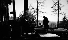 Winter Trees and Figures (cycle.nut66) Tags: people figures human trees silhouette pine tables horizon wendover woods high contast grainyfilmartfilter olympus epl1 evolt micro four thirds mzuiko