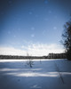 Kaksvetinen (tommi.vuorinen) Tags: liesjärvi national park finland nature landscape frozen winter tree night moonlight stars motion canon wide angle lake dreamy forest outdoor