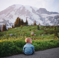 hiking with henry, part five (manyfires) Tags: film analog henry boy son family love baby toddler outdoors hike hiking pnw pacificnorthwest hasselblad hasselblad500cm mediumformat square washington mtrainier mtrainiernationalpark nationalpark sunset golden magichour trail path wildflowers valley mountain trees bokeh landscape