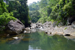 The Deep Blue (Miriam Christine) Tags: freshwater water deepblue turquoise vegetation pool fresh scenery green foliage srilanka kandy province rocky rocks boulders