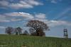 20042018-DSC_0136 (vidjanma) Tags: arbres nuages mirador horizon