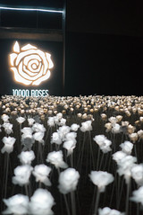 Trice Nagusara Cebu 10000 Roses (Trice Nagusara) Tags: cebu philippines travel travels temple leah 10000 roses 10000roses oqtagon club bar lechon pyramid tricenagusara tricenagusarasephcham