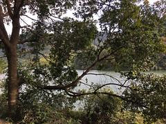 Ho Pui Reservoir (cowyeow) Tags: green landscape forest trees nature hongkong china chinese asia asian beautiful water lake hopuireservoir reservoir hopui shekkong taimoshan
